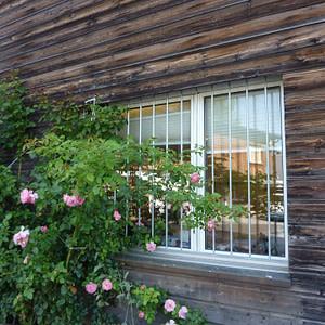 Fenstergitter Büro